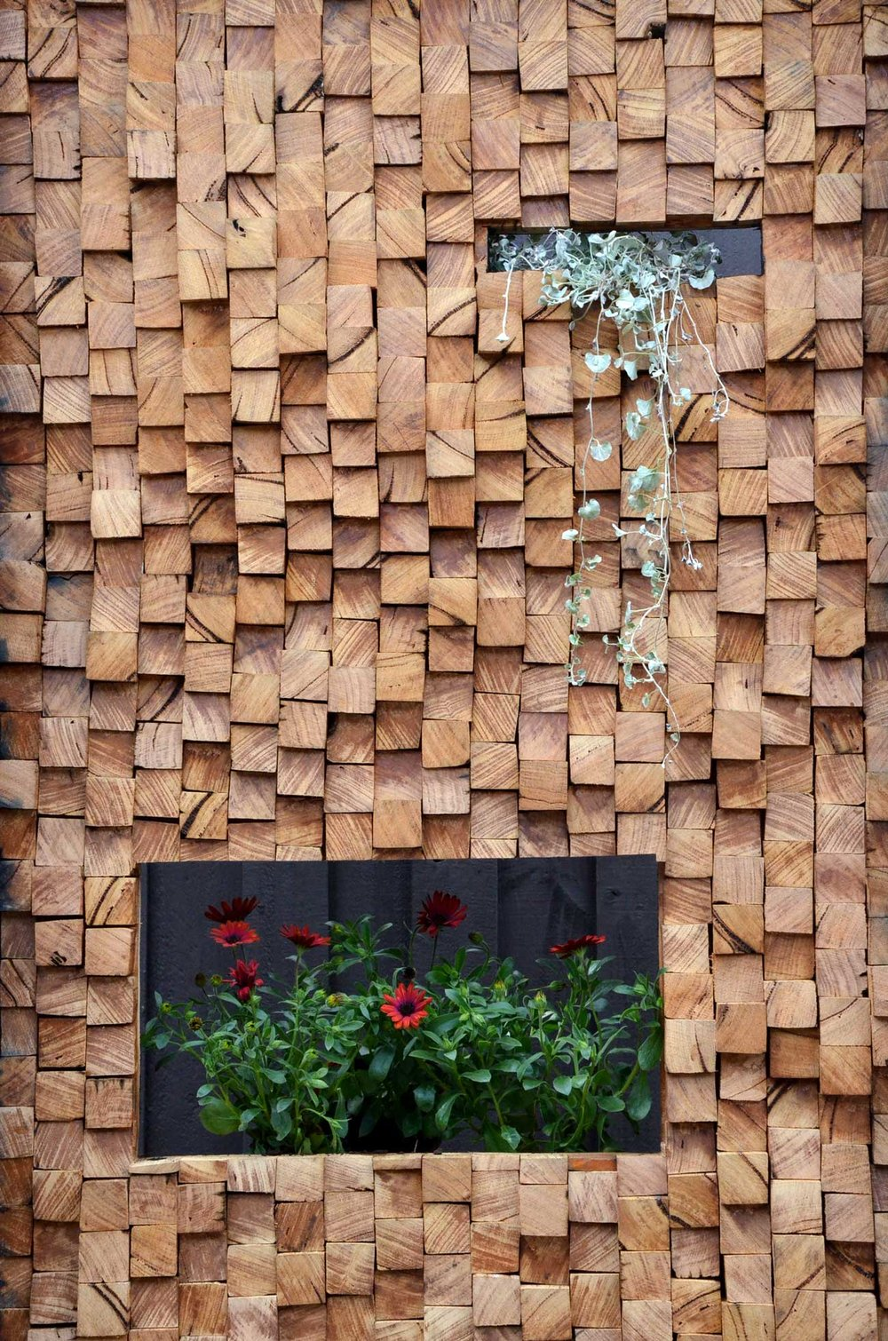 Timber feature wall in the garden