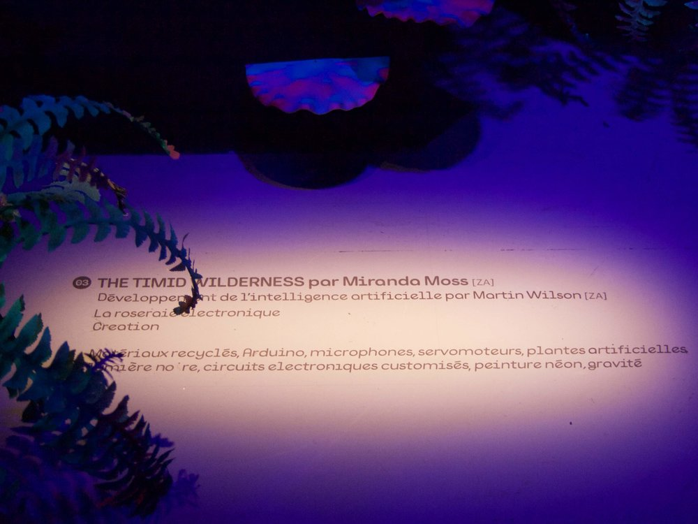 Miranda Moss, La Gaite Lyrique