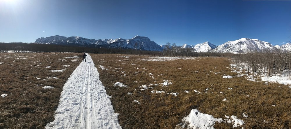 Wasn't much snow left on the flats of the Wishbone Trail, but still enough for us to ski!