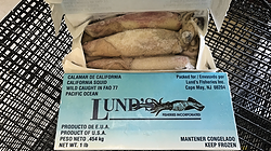 Frozen Box Squid