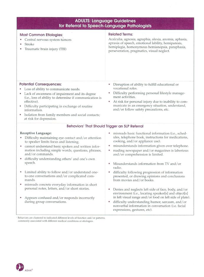 Language Guidelines