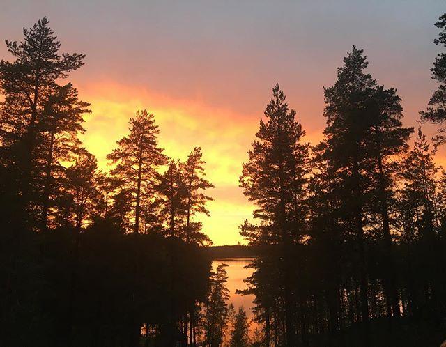 Suomen luonto ❤️ Hyvää itsenäisyyspäivää Suomi 101! 🎉🥂