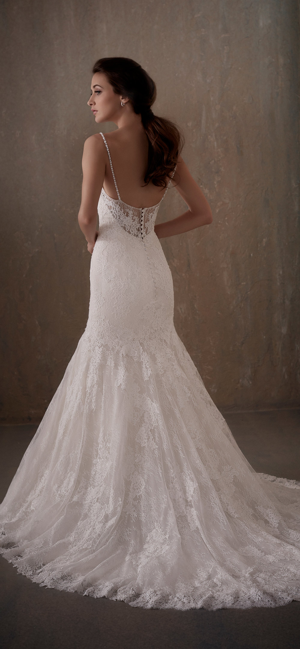 Adrianna Papell Style 31013 Country Bride and Gent Full Back View.jpg