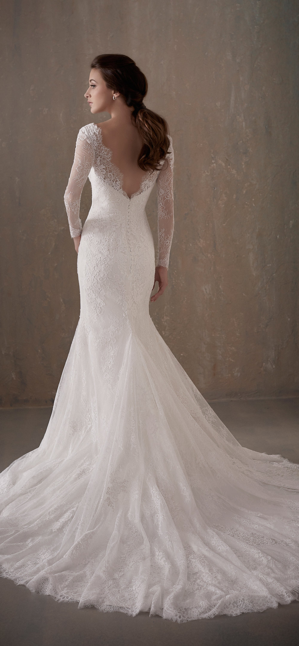 Adrianna Papell Style 31014 Country Bride and Gent Full Back View 1.jpg