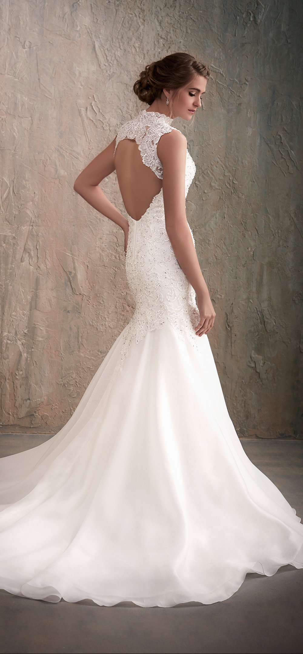 Adrianna Papell Style 31025 Country Bride and Gent Full Back View.jpg