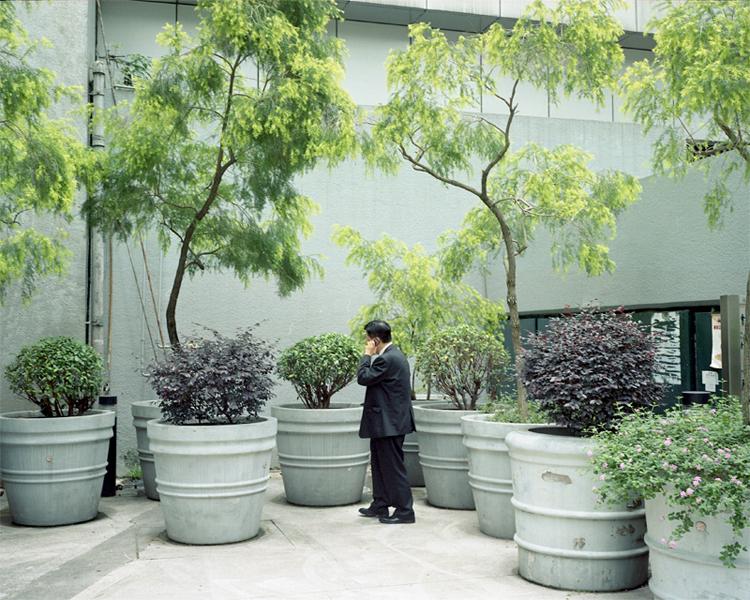 admirality-garden.jpg