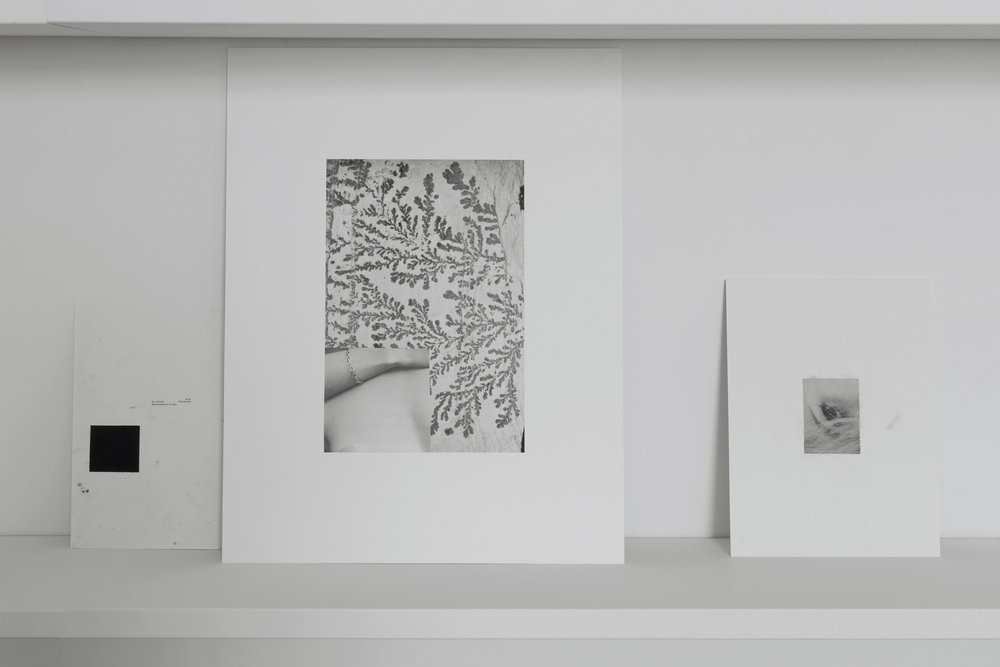 11_sj_Room(s)-to-move-je-tu-elle_detail_2017.jpg