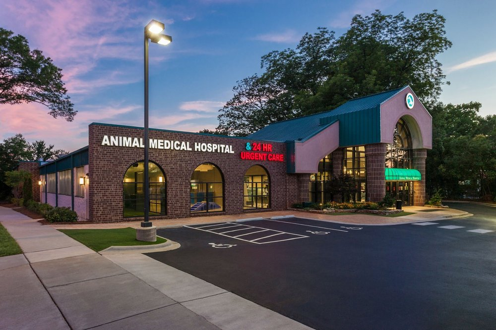 animal-medical-hospital.jpg