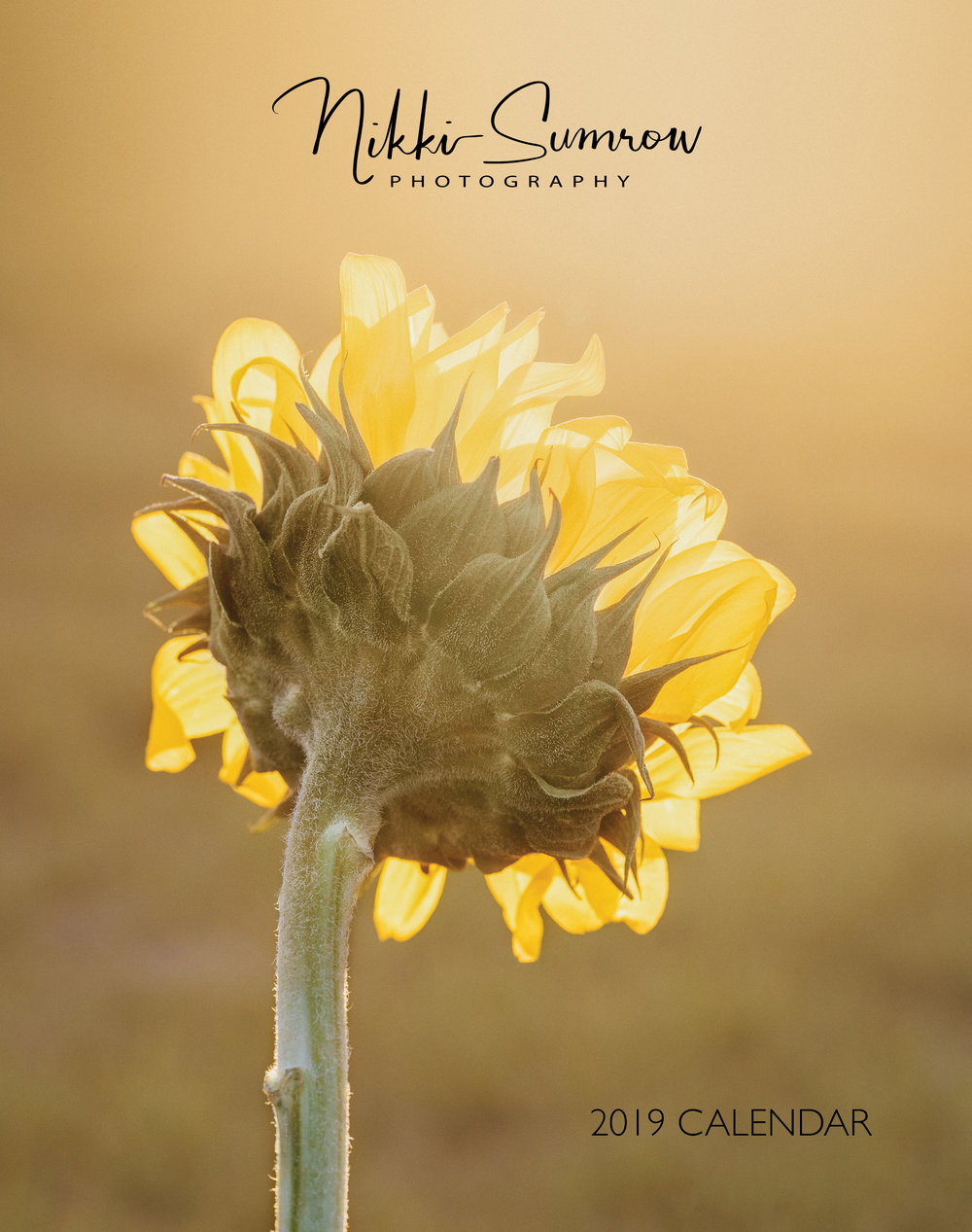 2019 Flower Calendar