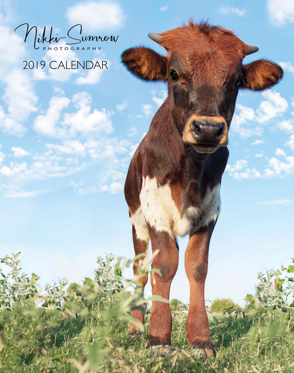 2019 Cattle Calendar
