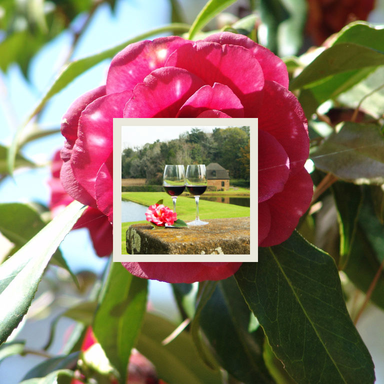 charleston-inside-out-garden-strolls-&-wine-tastings.jpg