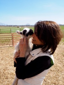 Carol Festa, 8 Hands Farm