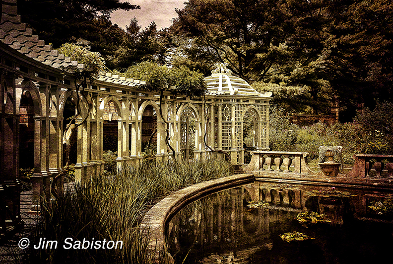 The Lotus Pond I by Jim Sabiston at Alex Ferrone Photography Gal