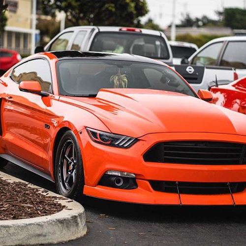 Rio Rosario - 2015 Ford Mustang GT Competition