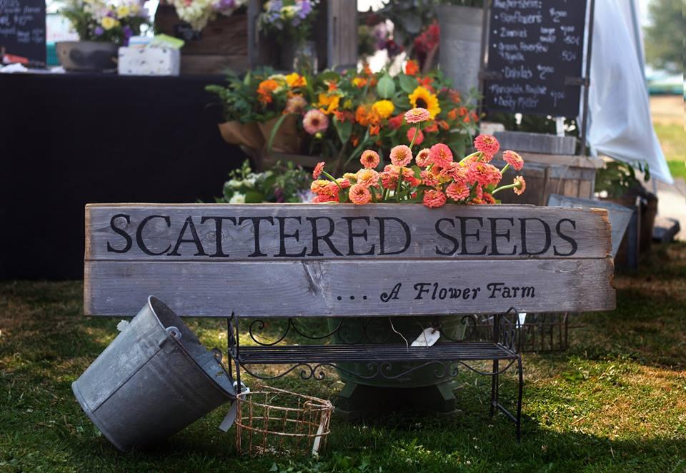 scattered seeds sign.jpg