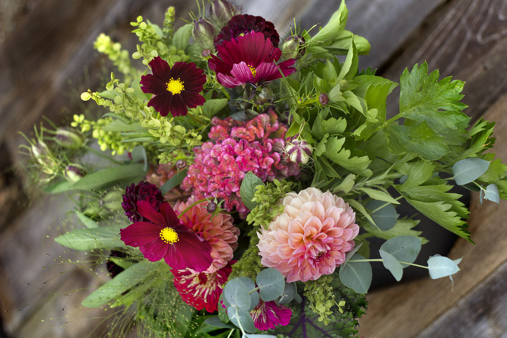 reduced_ss_gathering_ingredients_foliage_texture_flowers_cosmos_celosia_dahlia_atriplex.jpg