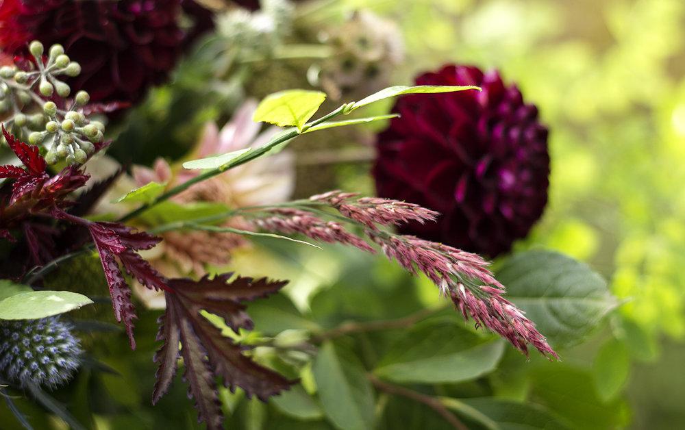 reduced_ss_ruby_grass_fall_arrangement_dahlias_sea_holly_hibiscus_foliage.jpg