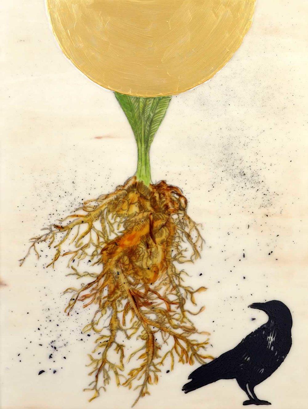 Mandrake (SOLD)
