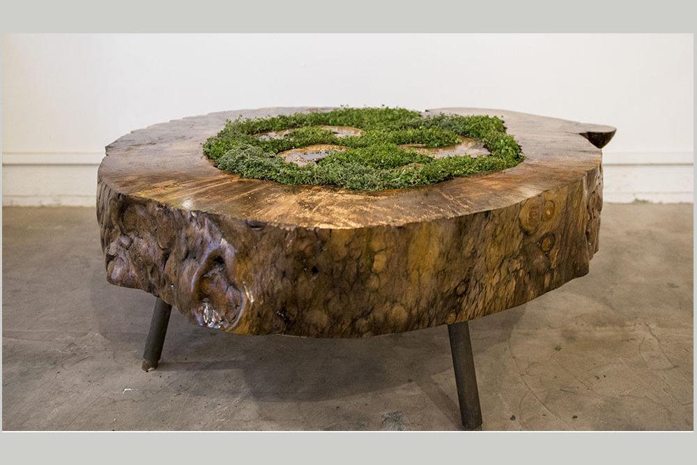 2014_11_14_07 Hollow Log Tea table with garden.jpg