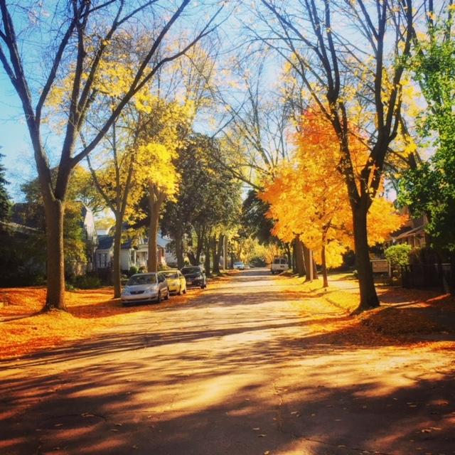 fall-in-neighborhood.jpg