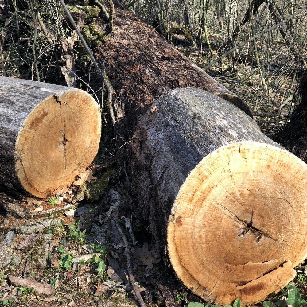cabin-logs