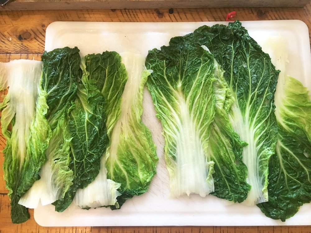 Overlapping Napa Cabbage Leaves alternating the stem and leaf sides.