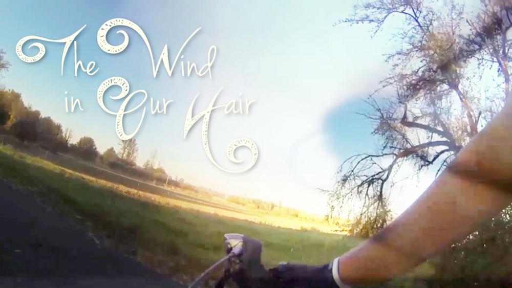 WindInOurHairfilm.png
