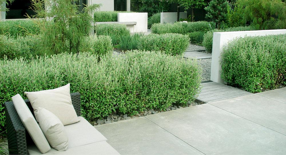 local_Landscape_Architecture_Residential_Design_Mark _Newdick.jpg