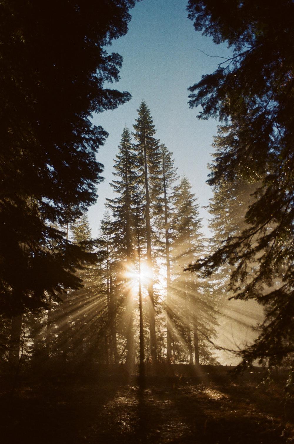 Yosemite -32.jpg