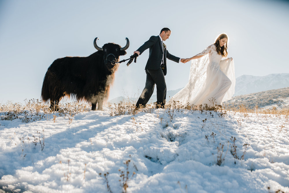 winter wedding logan utah styled shoot yak