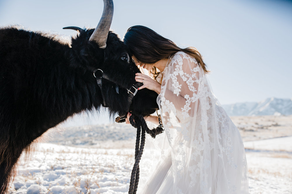 winter wedding photographer cache valley