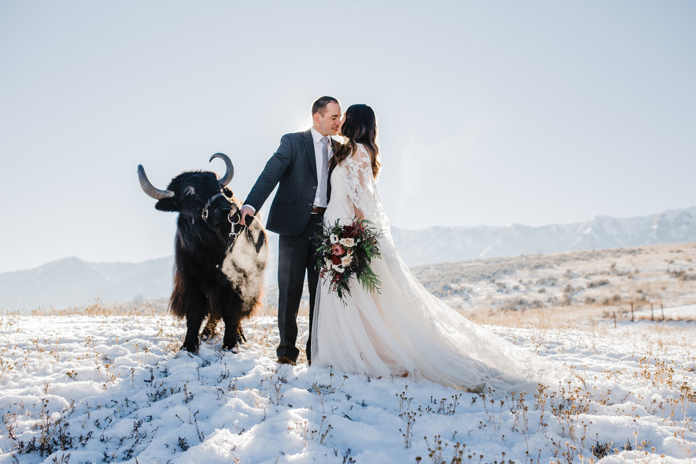 winter wedding photographer logan utah