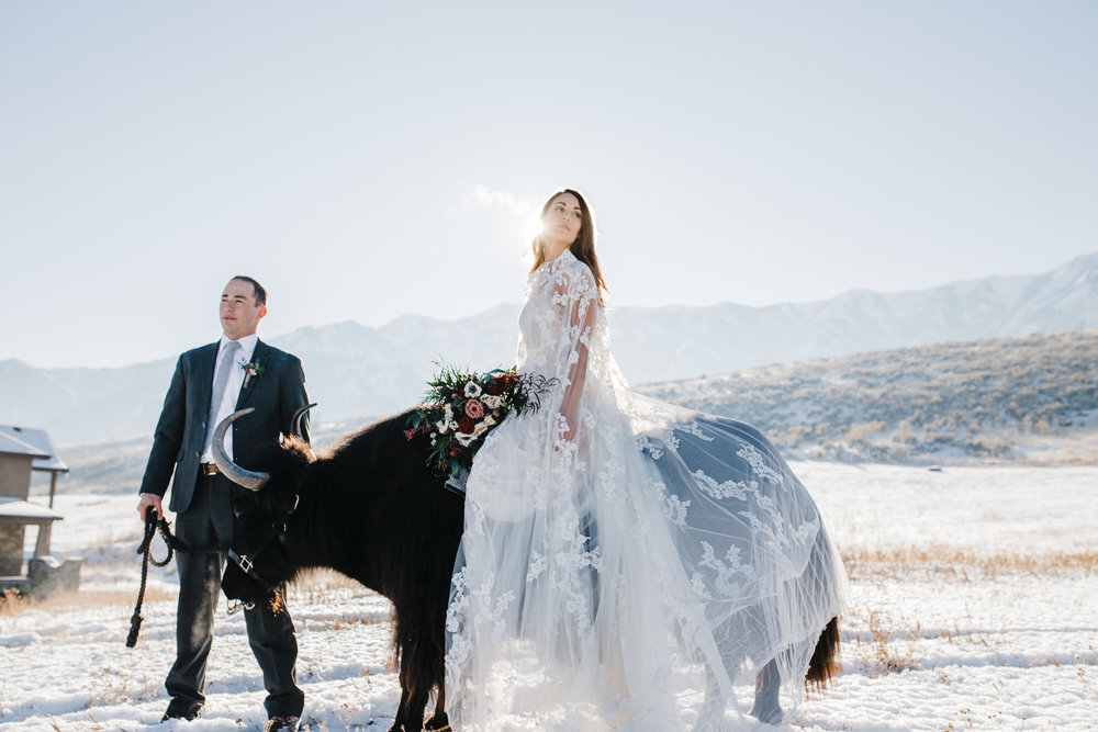 winter wedding photography yak logan utah