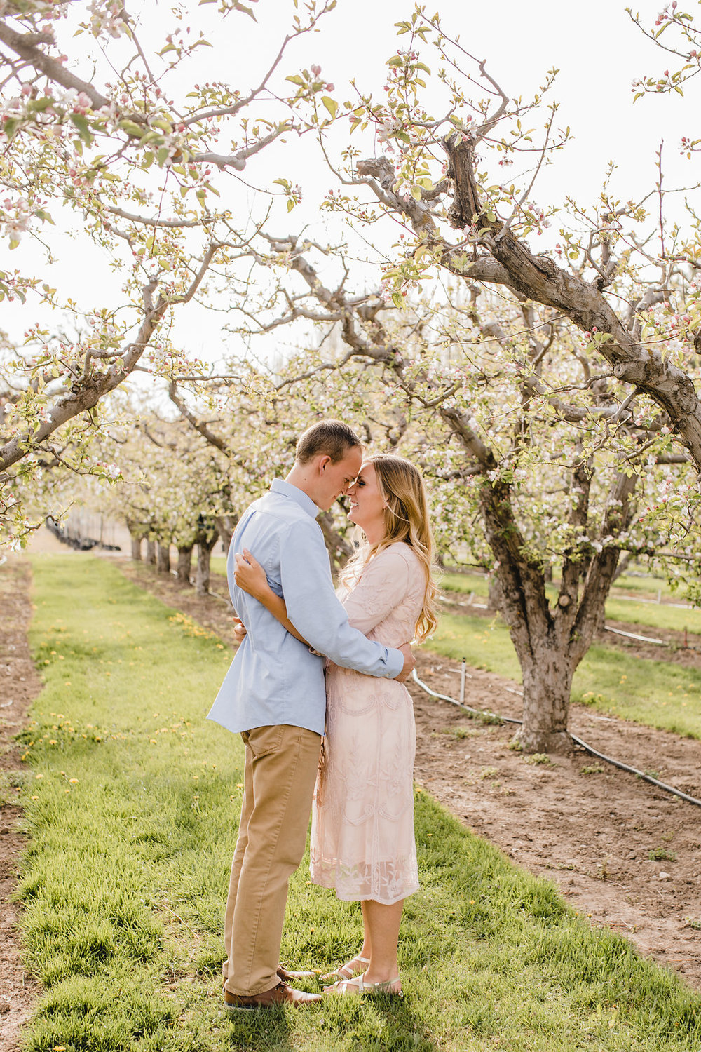 love birds orchard engagement photos professional photography logan utah calli richards