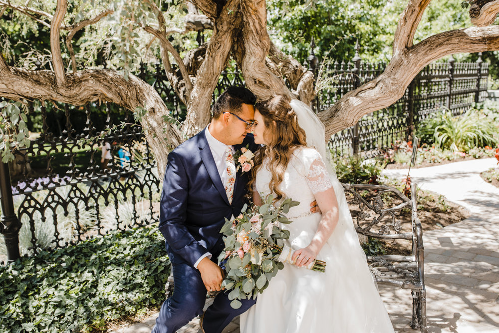 wedding photographer in utah valley temple wedding bench trees