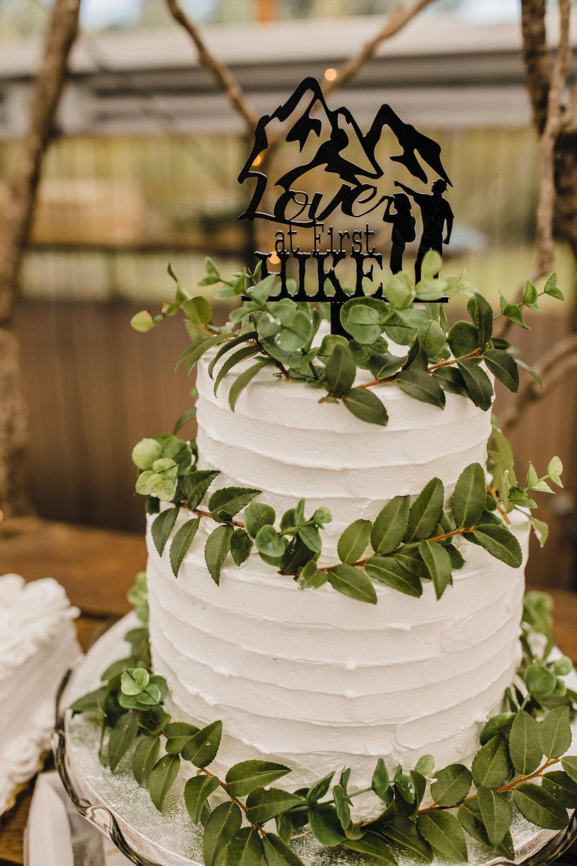 professional wedding photographer olympia washington cake topper simple cake greenery