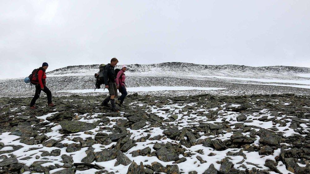 Frå ferske blåbær i lia til nysnø på toppen. Ein tur på Gjegnen er ein tur gjennom mange klimasoner.