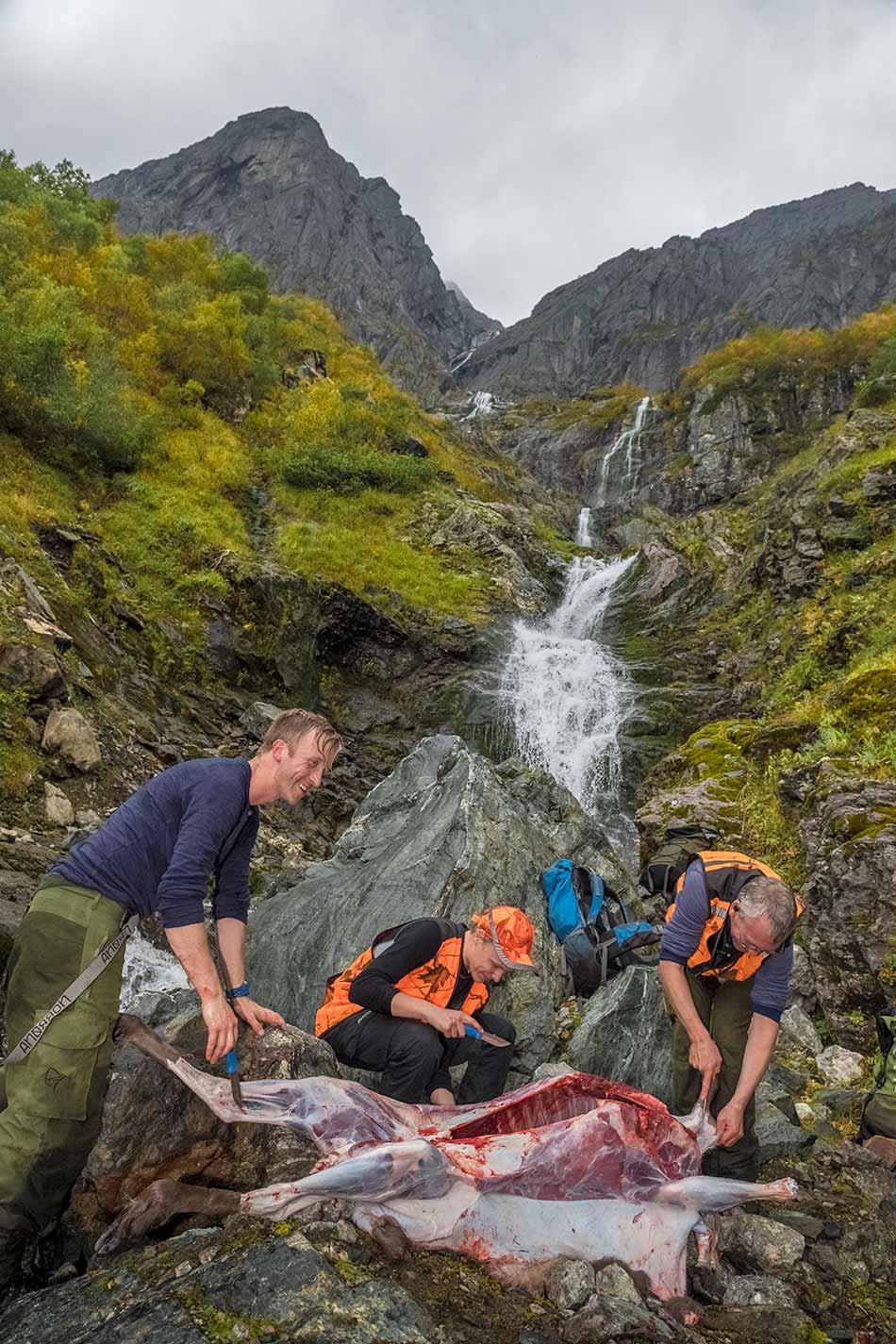 Anders Ommedal, Knut Tore Holme og Oddvin Holme må slakte og partere hjorten før byttet kan berast ned til fjorden.