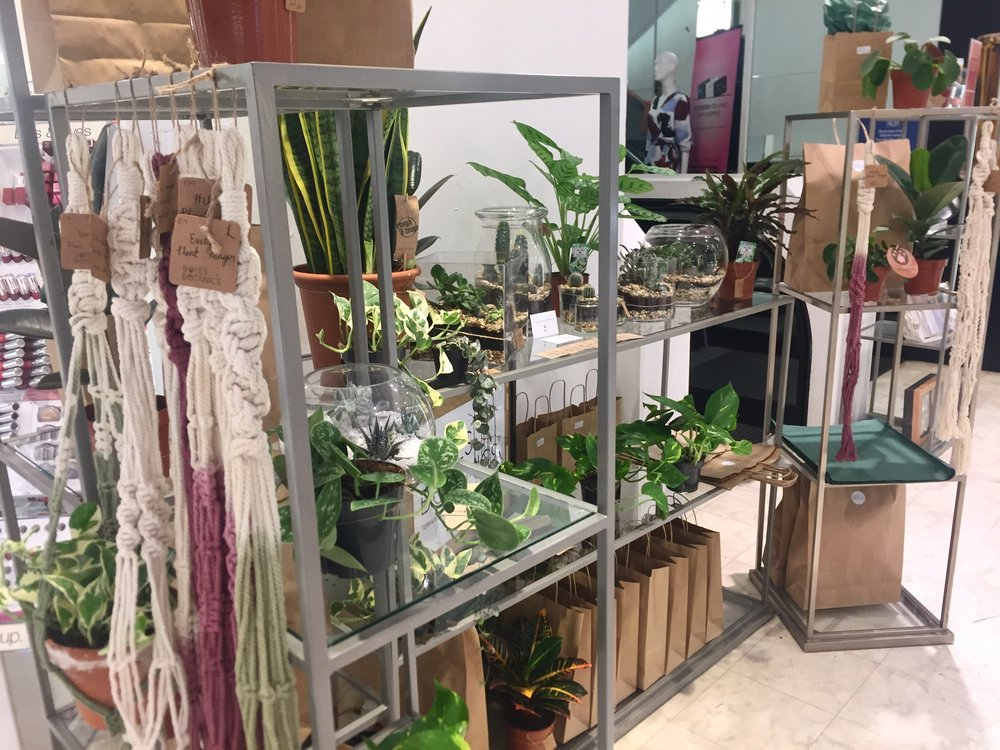 FUTURE POP UPS - Definitely keen to do another pop up shop, so if you would like Boyes Botanics to come to your store send us an email as we would love to hear from you!