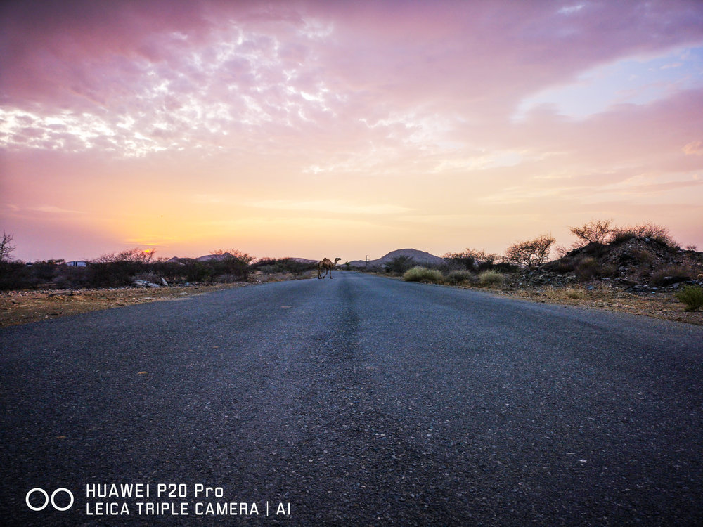 24 April 2018   Saudi Arabia Jizan /Wadi Jizan  iso : 50  expouser : 1/124  f/ : 1.8