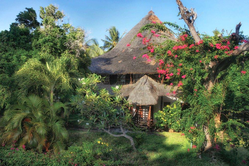 Garden Room Temple Point Resort