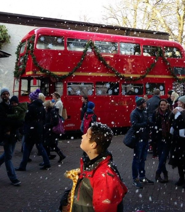 The-Red-Bus-news-12240060_920338188021251_4795059429506118544_n.jpg