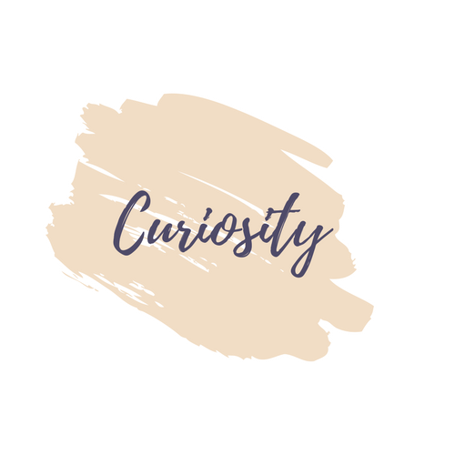 the power of curiosity, how to stay curious
