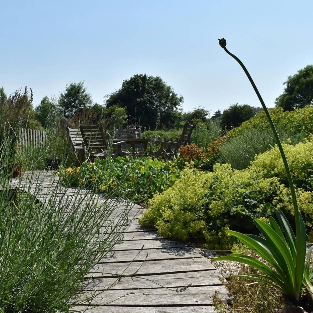 boardwalk_lavender_web.jpg & Our Work \u2014 Vanessa Boal Garden Design