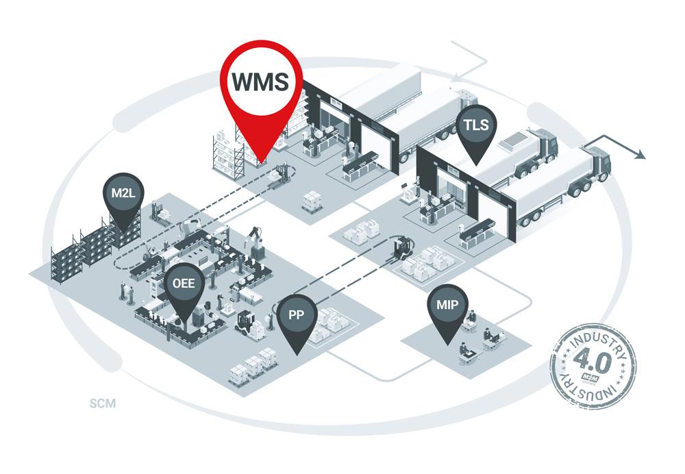 SCM-WMS-pin.jpg