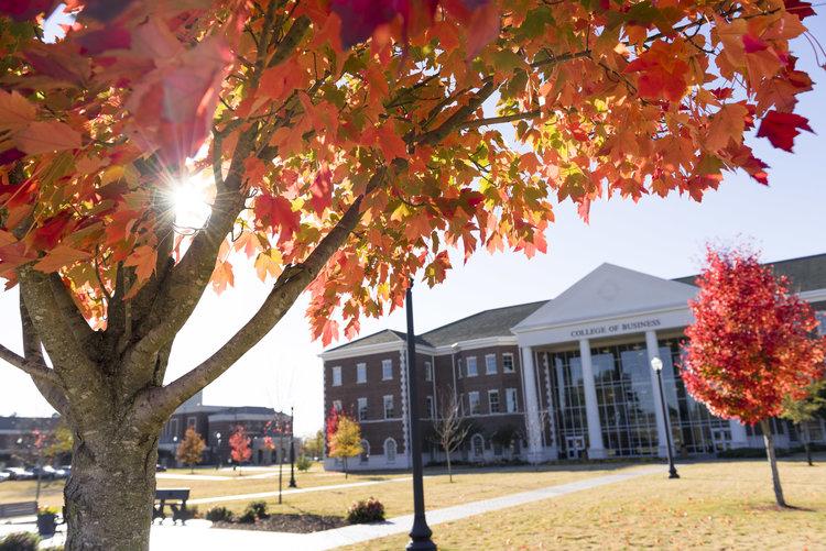 UCA Fall Campus.jpeg
