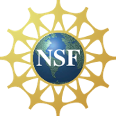 nsflogoforgencyber2017.png