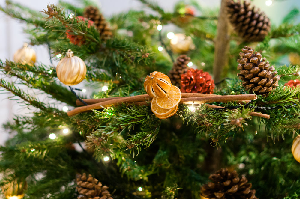 Christmas+Butlins+by+Alasdair-042.jpg