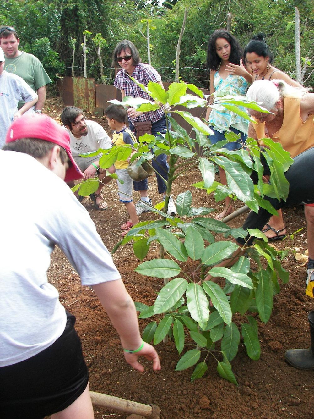 CUBA 2010 - 105.jpg