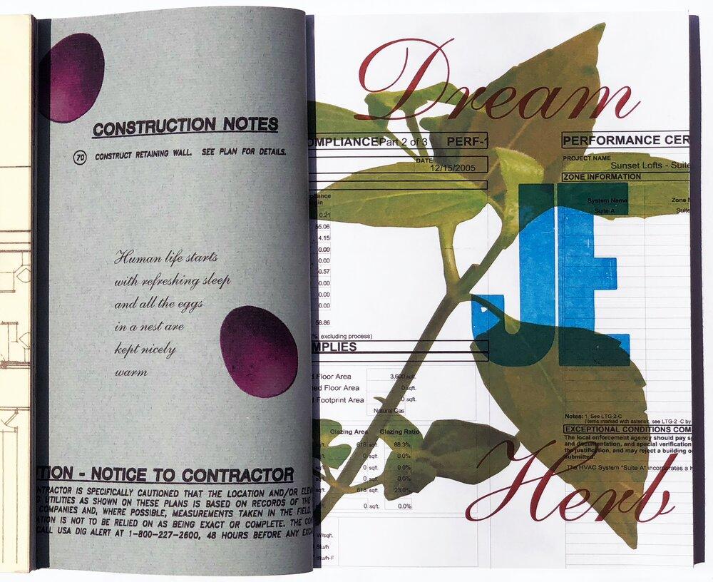 Dream Herb.jpg